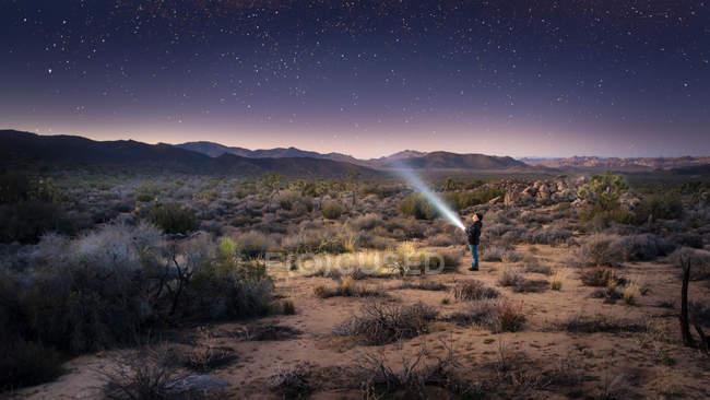 Boy shining torch light at stars in sky, Joshua Tree National Park, California, USA — Stock Photo