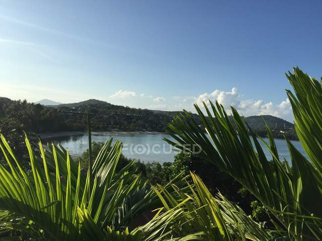 Vista panorámica de paisaje tropical etéreo y beach, Phuket, Tailandia - foto de stock
