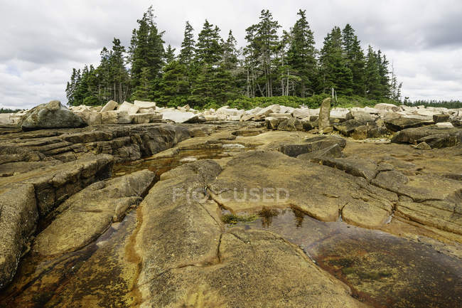Scenic view of tidal pools among granite outcrops, Acadia National Park, Maine, America, USA — Stock Photo