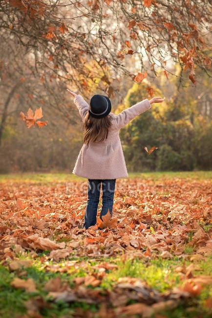 Дівчата кидали Осіннє листя в повітрі в парку — стокове фото
