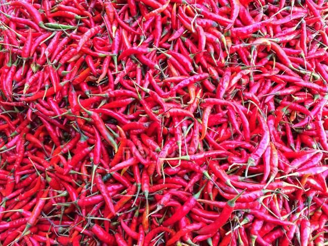Pimentas vermelhas em amontoado, quadro completo — Fotografia de Stock