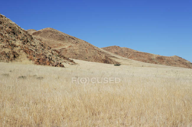 Scenic view of beautiful rural landscape, USA — Stock Photo