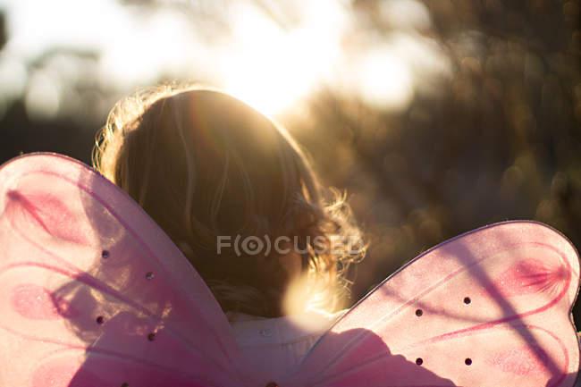 Vista posterior de una chica con traje de hadas en luz del sol - foto de stock