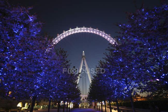 United Kingdom, England, London, Illuminated trees with London Eye on background at night — Stock Photo