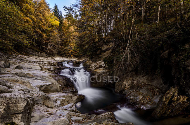Vista panoramica del torrente nella foresta autunnale — Foto stock