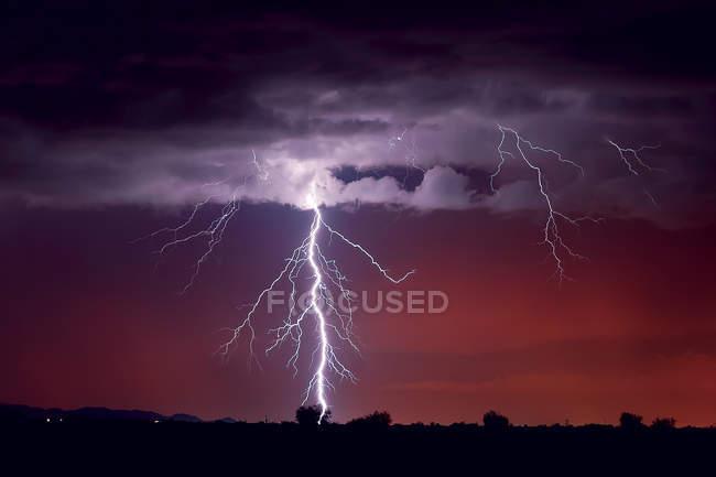 Vista panorâmica de um raio atingindo uma árvore, Arlington, Arizona, EUA — Fotografia de Stock