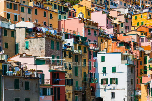 Traditional colorful italian houses, Manarola, Cinque Terre, Italy — Stock Photo