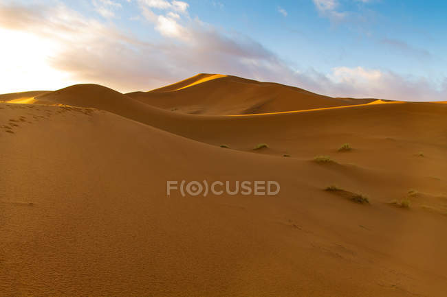 Живописный вид дюн в пустыне Сахаре, Марокко — стоковое фото