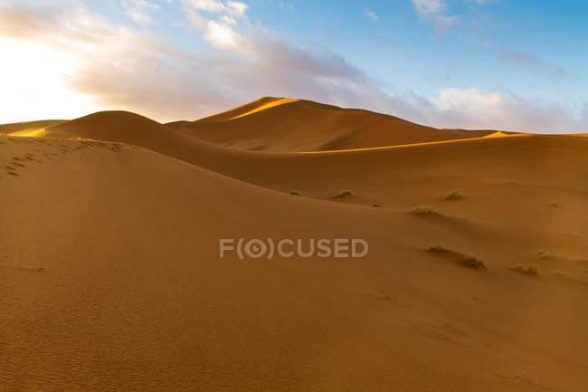 Мальовничий вид на дюни в пустелі Сахара, Марокко — стокове фото