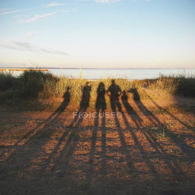 Семейный портрет тени на пляже, Норвегия — стоковое фото