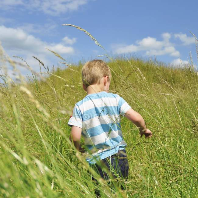 Rear view of boy running through wheat field — Stock Photo