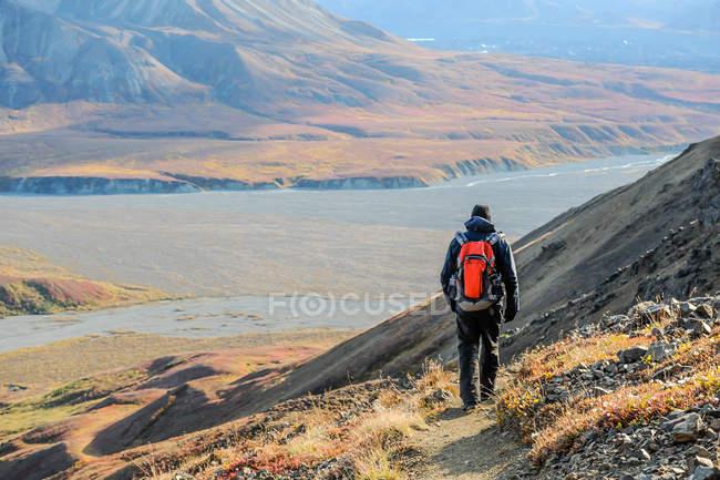 США, Аляска, Национальный Парк Денали, мужской туристы на след в национальном парке Денали — стоковое фото