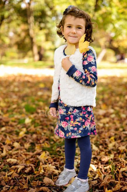 Porträt eines Mädchens, das den Herbst genießt und im Park mit Blättern spielt — Stockfoto