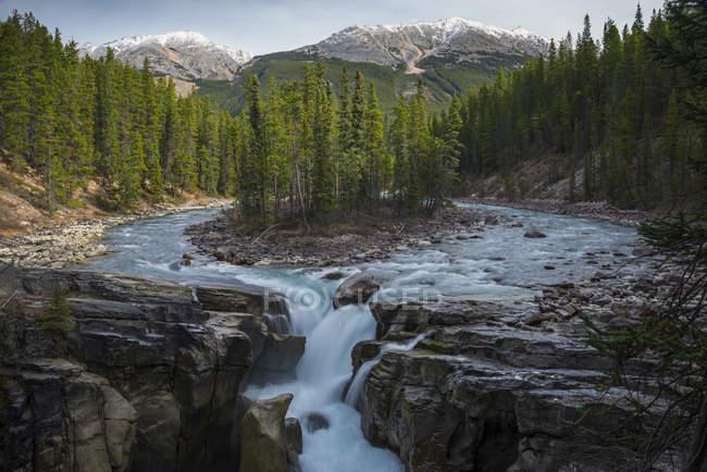 Симметричные вид пейзаж с водопадом, леса и горы, Альберта, Канада, Sunwapta водопад — стоковое фото