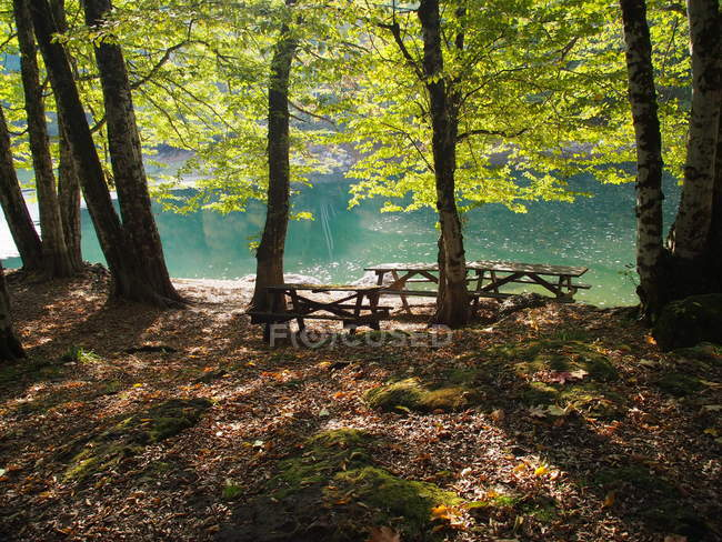 Vista panoramica di alberi su una riva del fiume, Yedigoller, Turchia — Foto stock