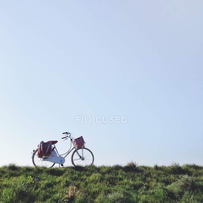 Bicicleta holandesa em pé na grama verde contra o céu azul — Fotografia de Stock