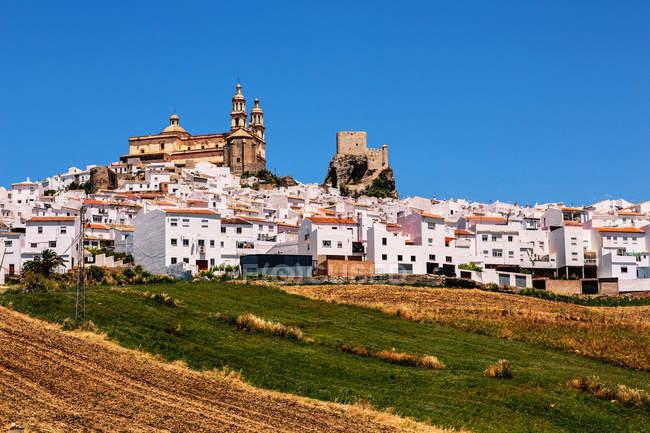 Vista panoramica della città bianca e dei campi in primo piano, Pueblos Blancos, Andalusia, Spagna — Foto stock