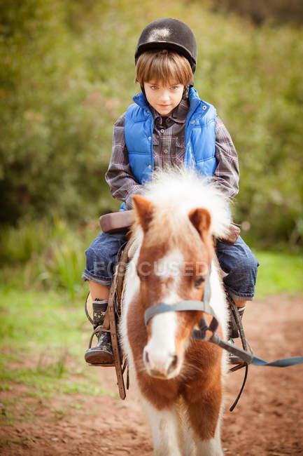 Мальчик катается на пони в парке — стоковое фото