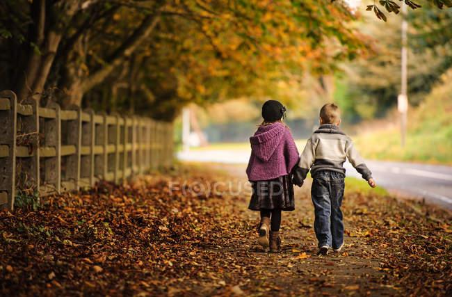 Vista trasera del hermano y la hermana caminando juntos sobre hojas caídas de otoño en el parque - foto de stock