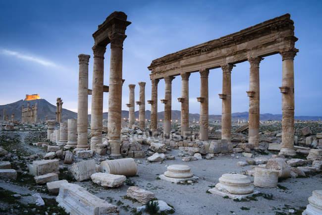 Мальовничий вид на руїнах Пальміра, Сирійська Арабська Республіка — стокове фото