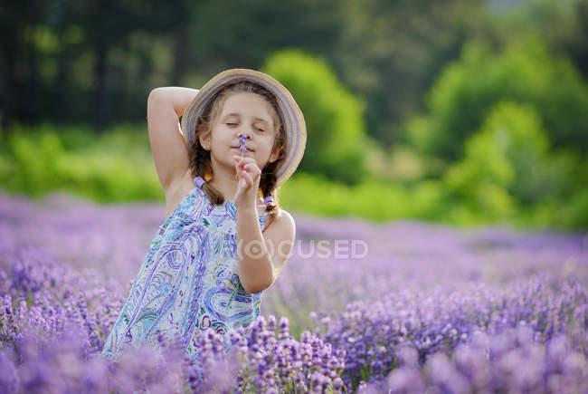 Маленькая девочка нюхает цветы на лавандовом поле — стоковое фото