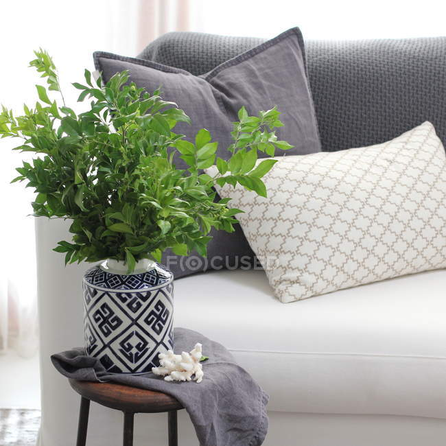 Plant in vase on table in modern interior — Stock Photo
