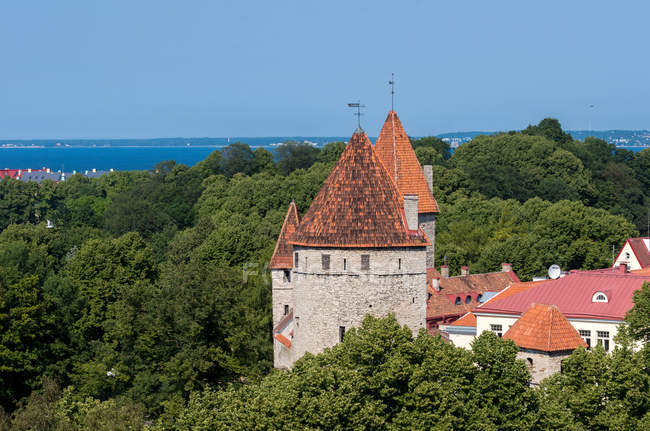 Bâtiments de la vieille ville et mer en arrière-plan, Tallinn, Estonie — Photo de stock