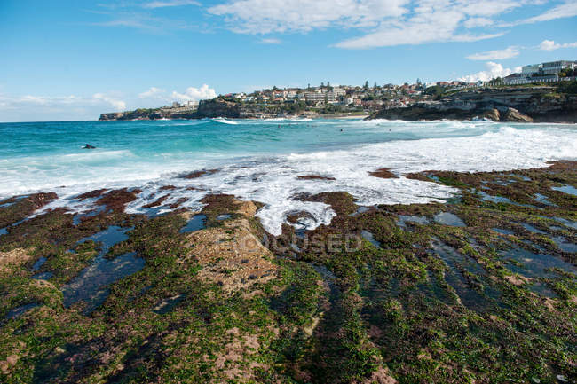 Scenic view of Tamarama beach, Sydney, New South Wales, Australia — Stock Photo