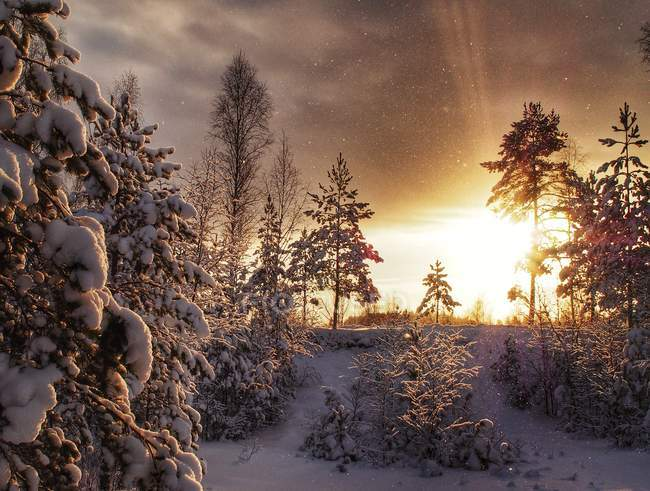 Sweden, scenic view of sunset over winter landscape — Stock Photo