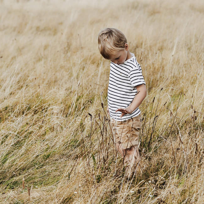 Curious little boy standing in meadow — Stock Photo
