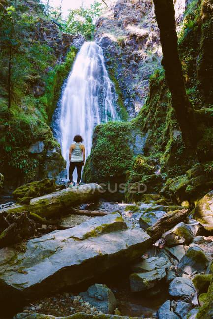 Женщина, стоящая на скалах на Сьюзан-Крик-Фолс, штат Орегон, Америка, США — стоковое фото