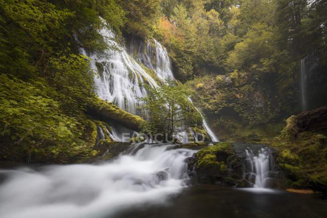 Fluss, lange Belichtung von Wasserfall, Bäumen — Stockfoto