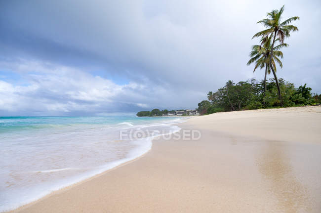 Tropical resort, palm trees on beach at sea water — Stock Photo