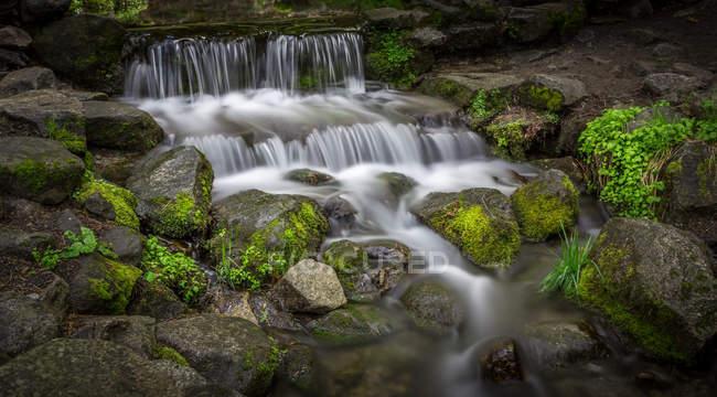 Речной поток, длительное воздействие водопада и пород с мхом — стоковое фото