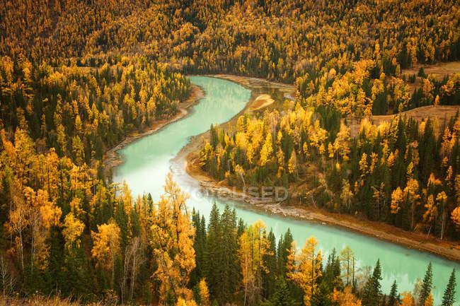 Caudal del río y bosque con árboles otoñales - foto de stock
