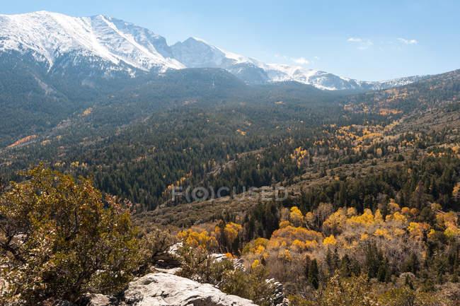 Vista panorámica de Wheeler Peak, el Parque Nacional Gran Cuenca, Nevada, Estados Unidos, Estados Unidos - foto de stock
