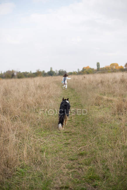 Rear view of girl running with her dog — Fotografia de Stock