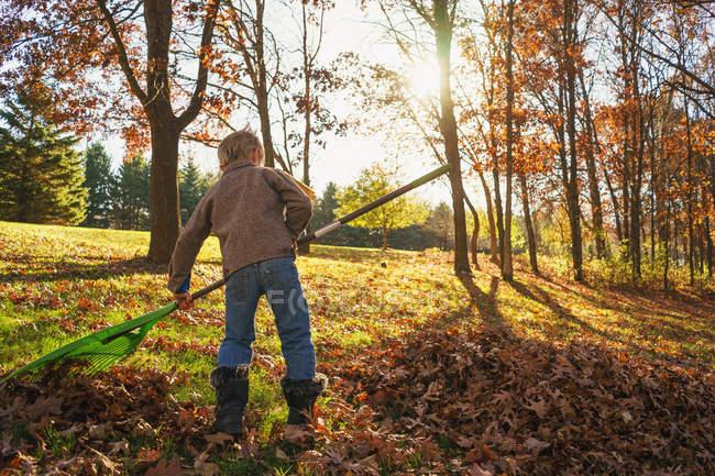 Young boy raking autumn leaves — Stock Photo