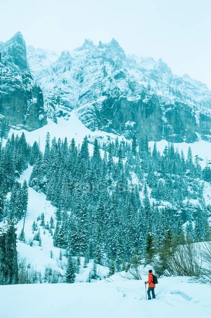 Vue panoramique de l'homme, randonnée en montagne, Telluride, Colorado, Amérique, Usa — Photo de stock