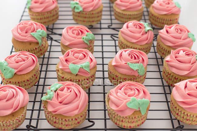 Queques com buttercream cor-de-rosa em uma cremalheira refrigerando — Fotografia de Stock