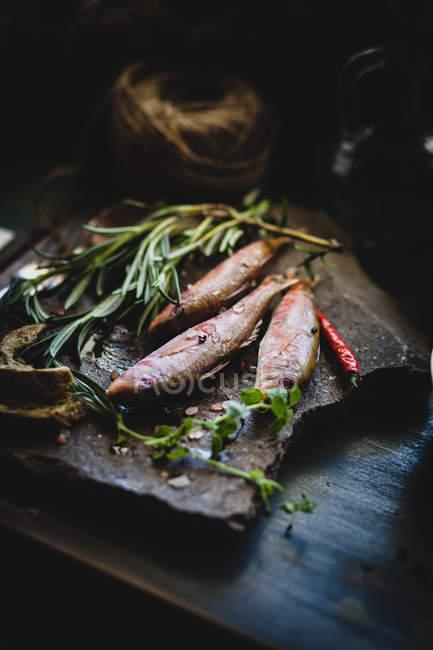 Свіжої риби з травами на Розробні рада — стокове фото