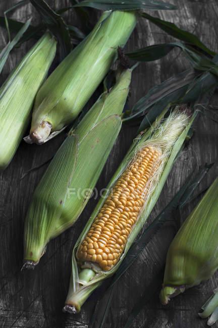 Closeup view of fresh corn on the cob — Stock Photo