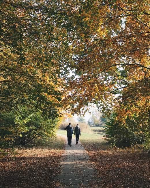 Père et deux fils vont se promener, Huizen, Hollande — Photo de stock