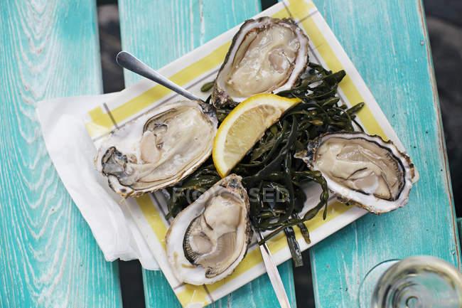 Vista superior de ostras frescas y sabrosas con limón - foto de stock