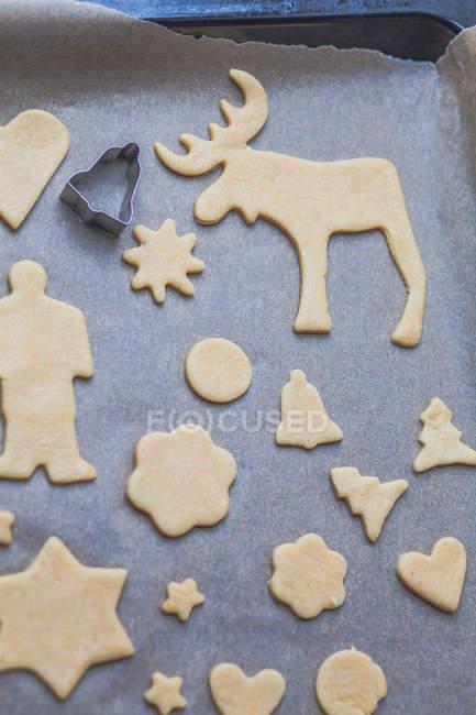 Рождественское печенье на готовый для выпечки противень — стоковое фото