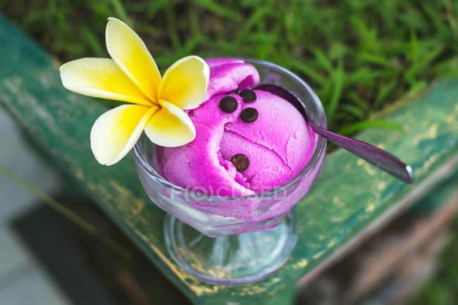 Dessert di gelato di frutta drago — Foto stock