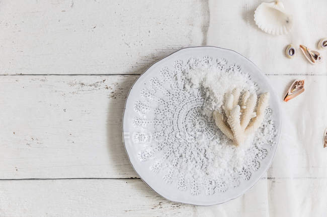 Coral and sea salt on a white plate — Stock Photo