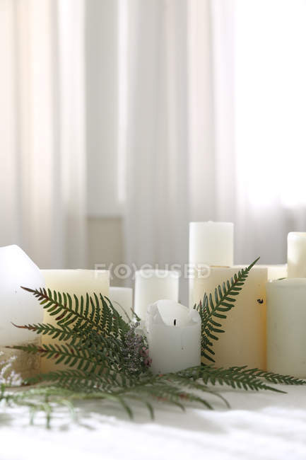 Candles and fern centerpiece on a table — Stock Photo