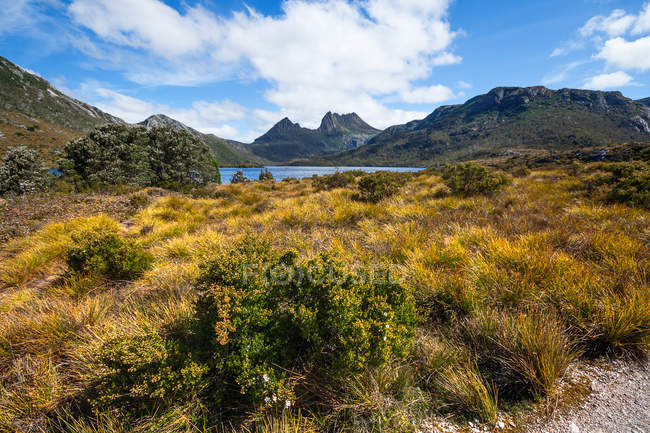 Vista panorâmica de Cradle Mountain, Cradle Mountain-Lake St Clair National Park, Tasmânia, Austrália — Fotografia de Stock