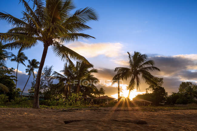 Sunset at Holloways Beach, Cairns, Far North Queensland, Australi — Stock Photo